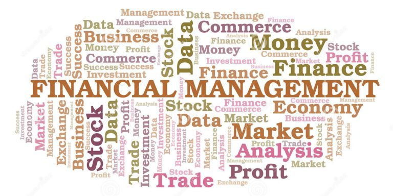 FINANCIAL MANAGEMENT ASPECTS