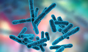 PHARMA MICROORGANISMS